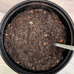 make succulent compost