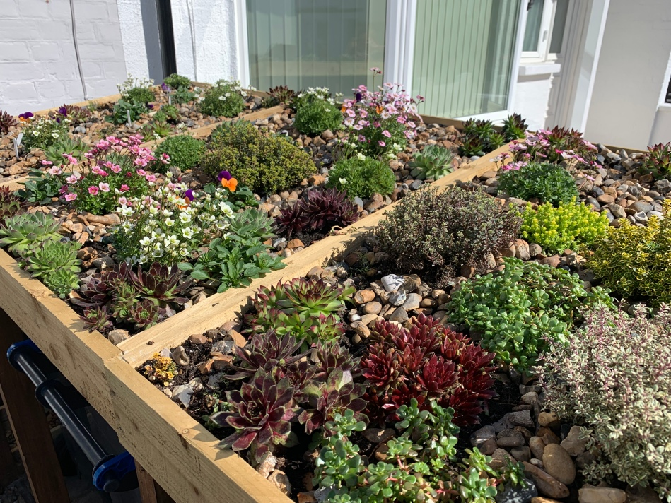 living roof bin storage