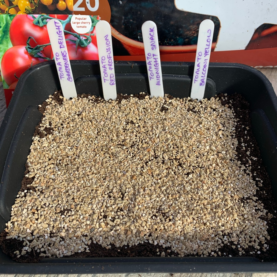 Seed tray with vermiculite