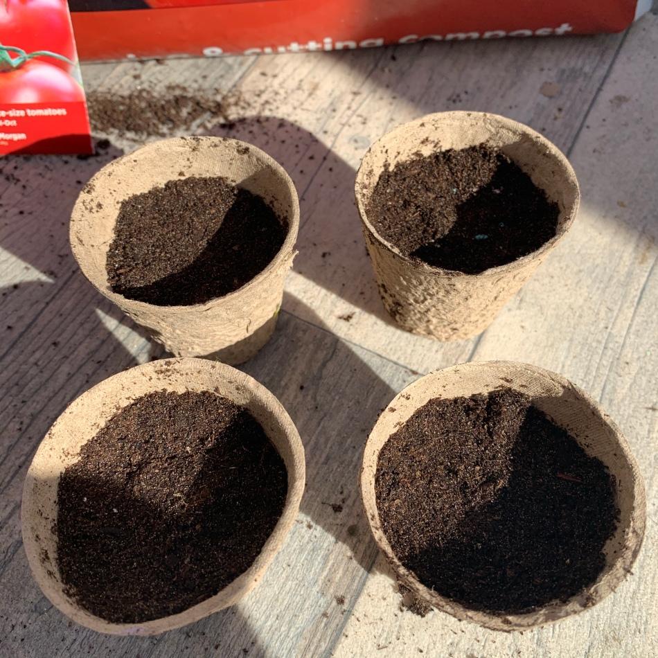 Fibre pots with compost
