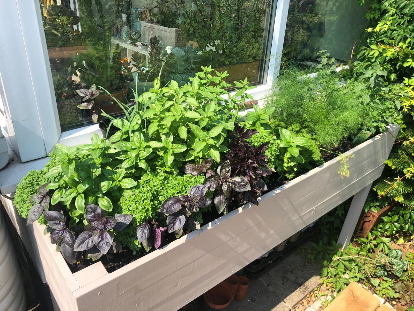 DIY herb planter filled with mixed herbs