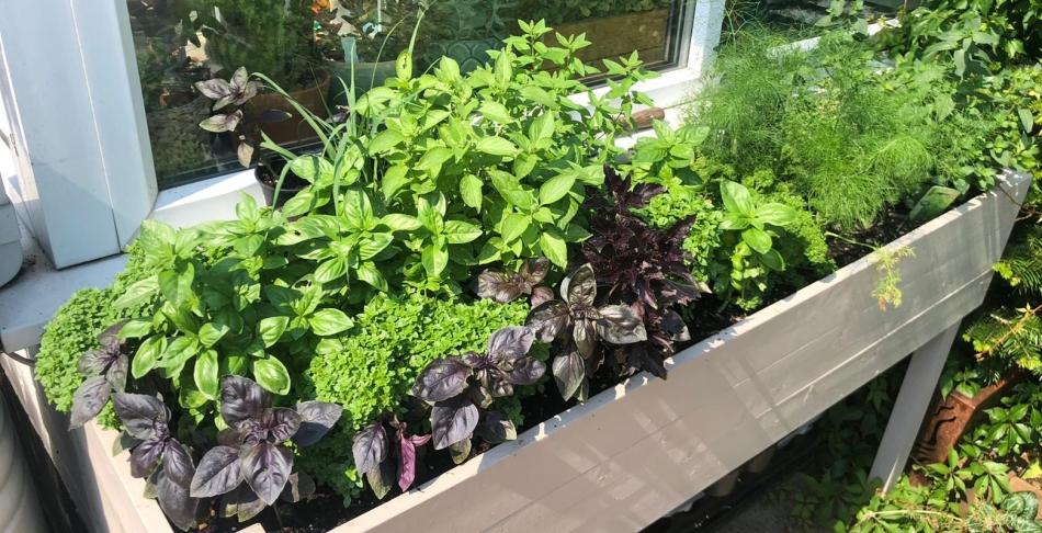 diy raised herb planter