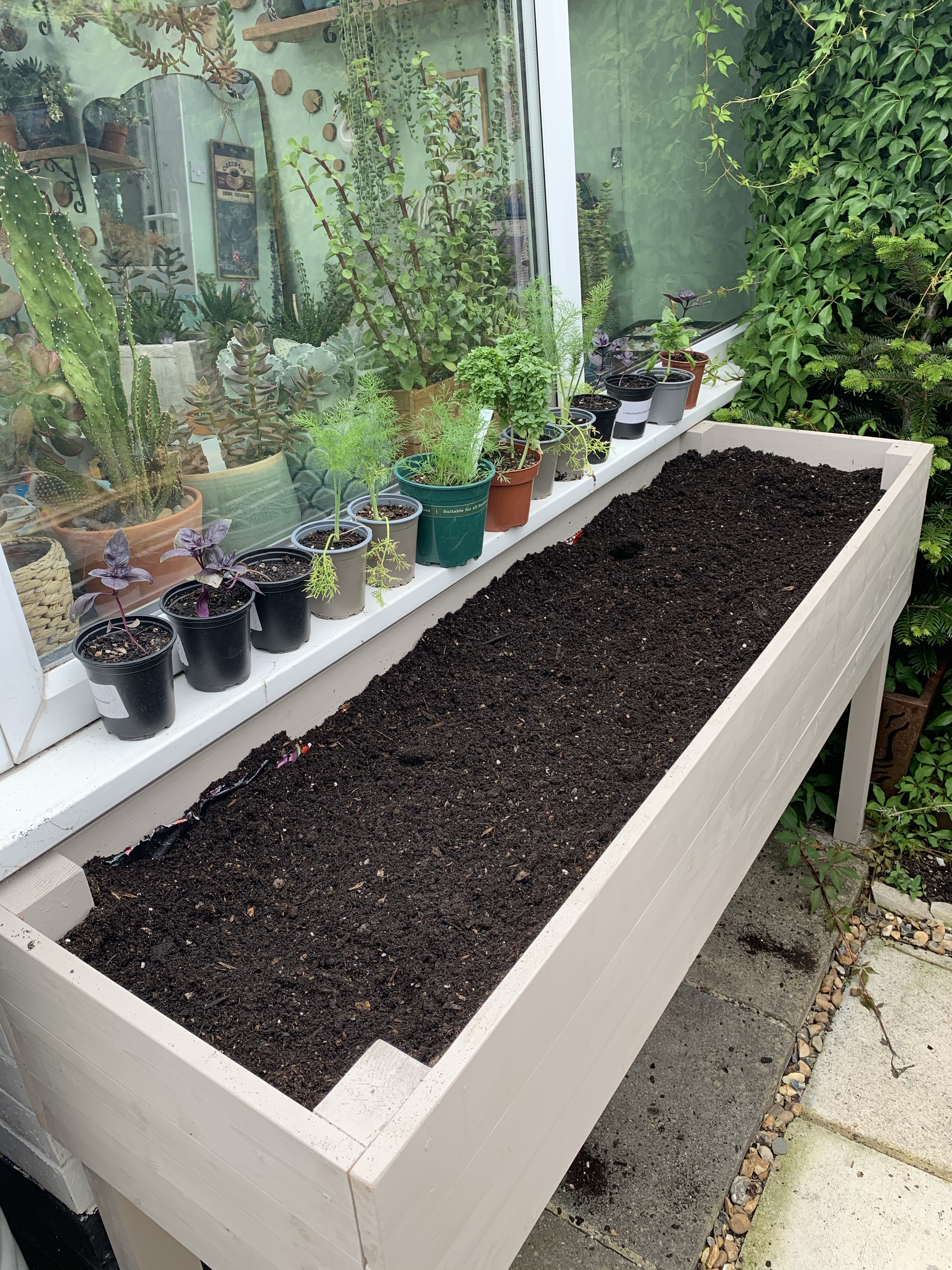herb planter filled with compost